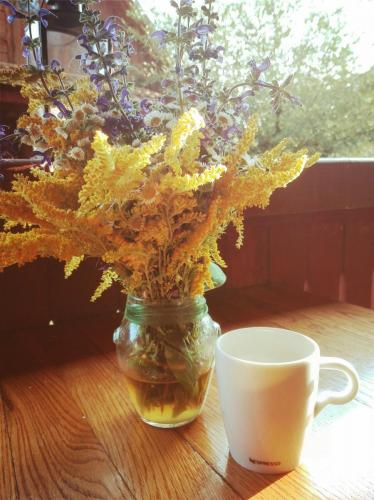 Dimineață cu Nespresso și sânziene la Cund